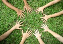 grassroots.237201152_std-794224
